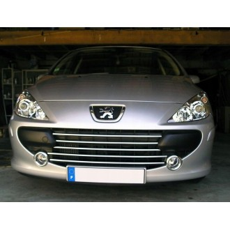 PEUGEOT 307 - Chrome Grille Kit 3M Tuning